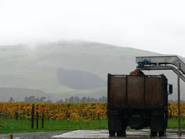 New Zealand Love. Queenstown to Christchurch and Waipara Wine Country