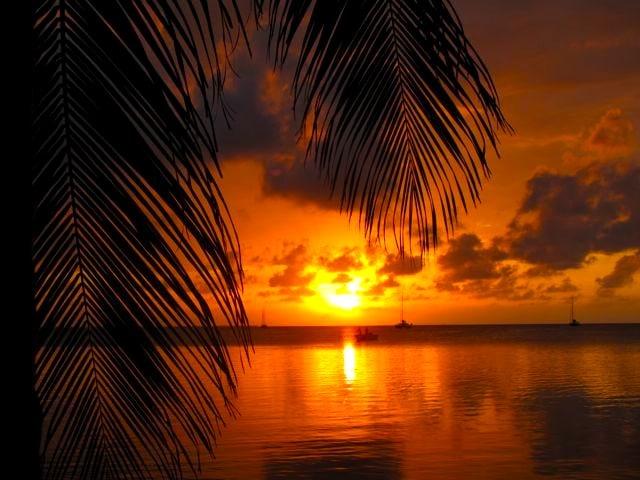 Travel to Caye Caulker, Belize