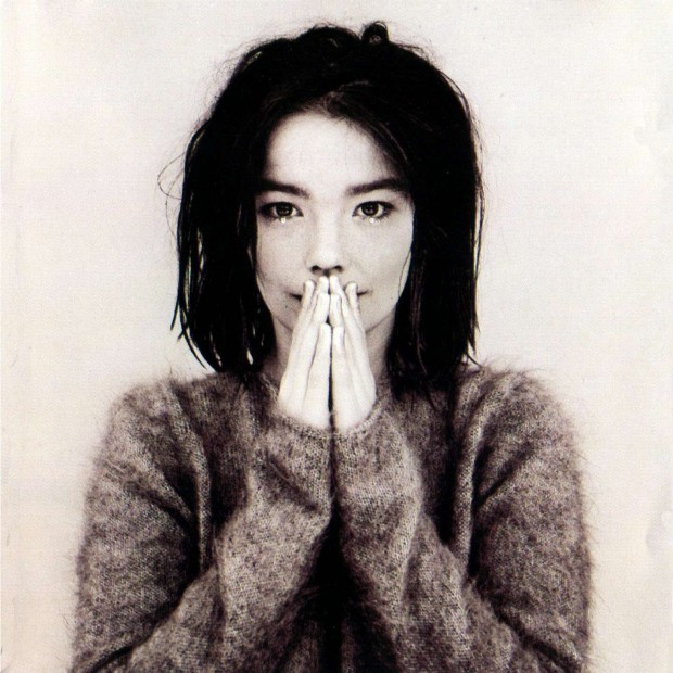 "dobbernationLOVES Presents ""A Homage to Bjork's DEBUT"""