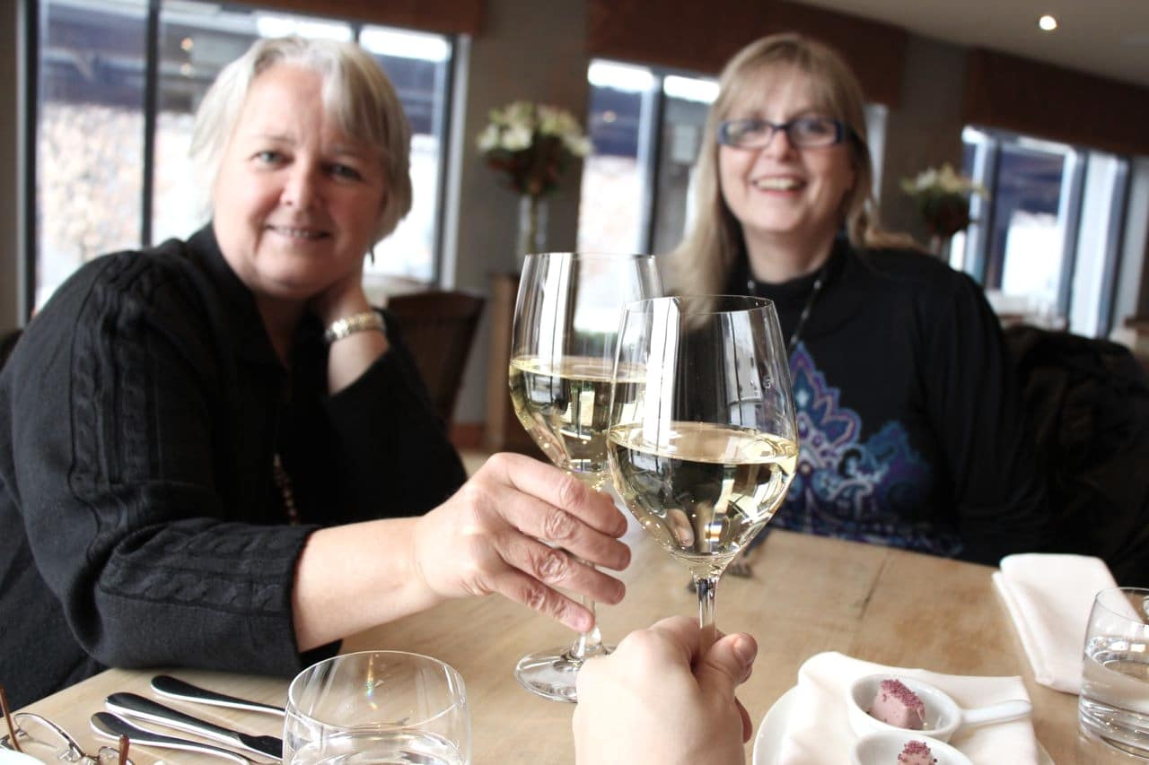 Swirl and sip with friends by booking one of the best Niagara wine tours.