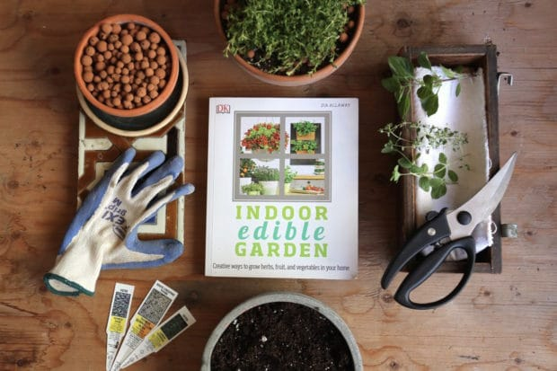 Here's How to Grow an Enviable Indoor Edible Garden in the City