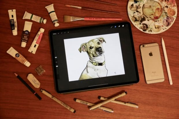 Draw realistic animals on iPad with our Procreate Tutorial.