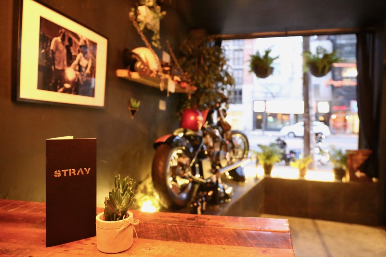 Bar Stray Toronto is a chic biker bar on College Street in Little Italy.