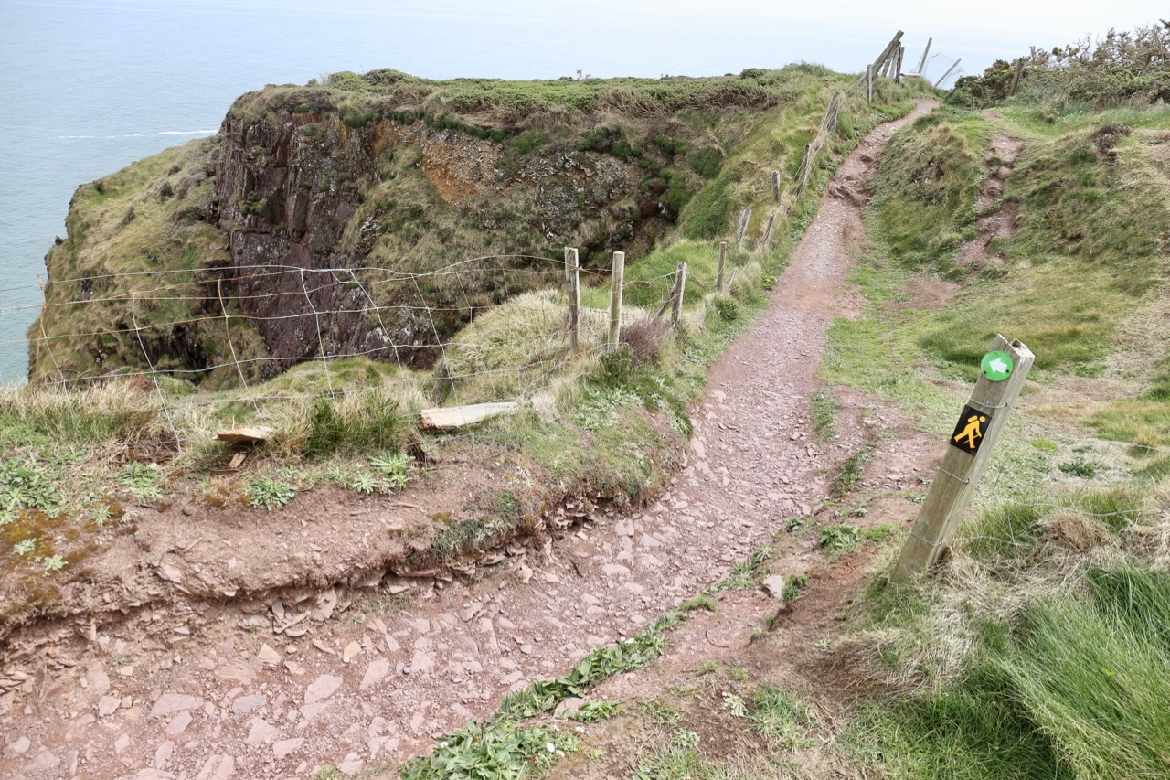 Ardmore Cliff Walk is one of the best seaside hikes in Ireland.