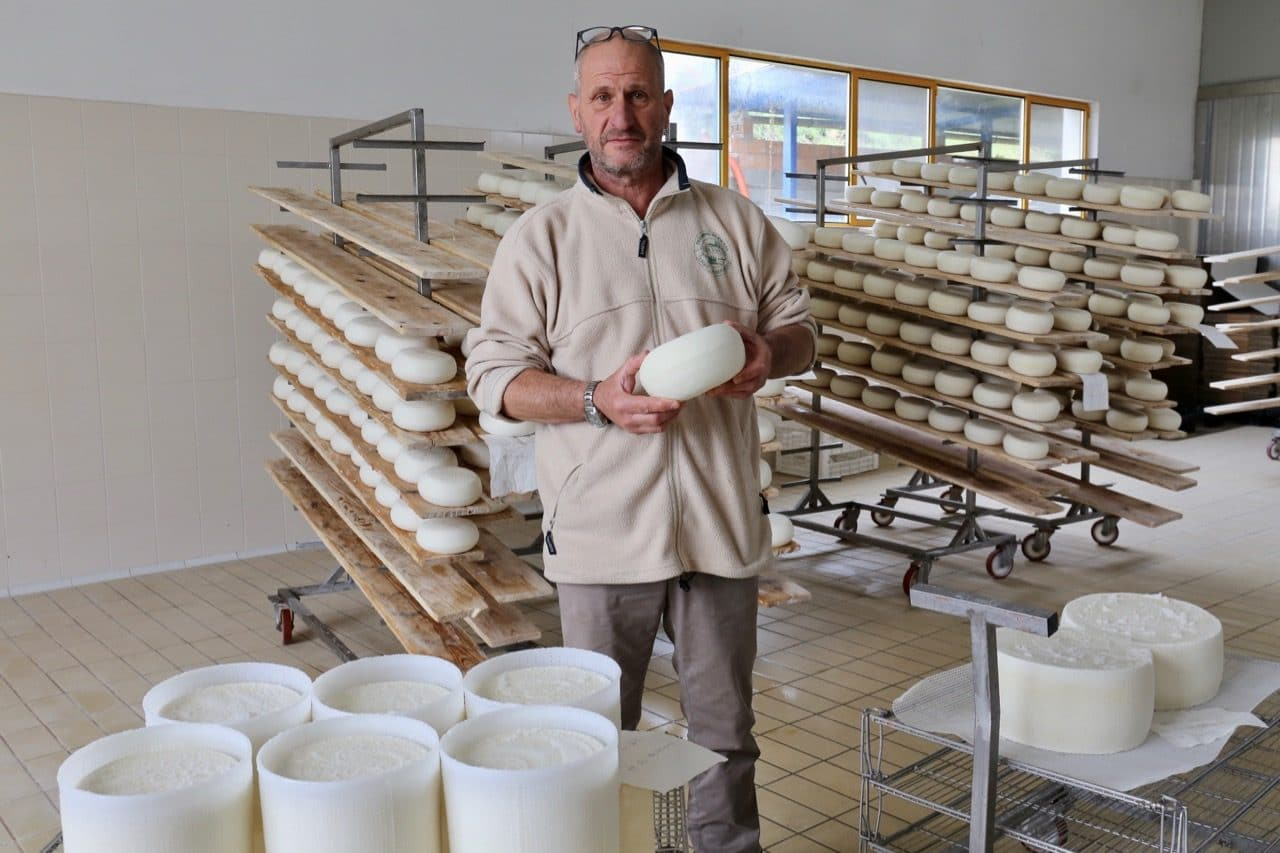Take a tour of Caseificio Verdi Pascoli, a pecorino cheese farm in Pienza.