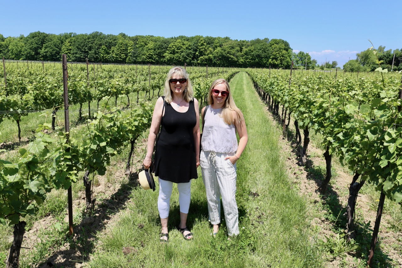 Learn about the winemaking process in Niagara by visiting an award winning vineyard.