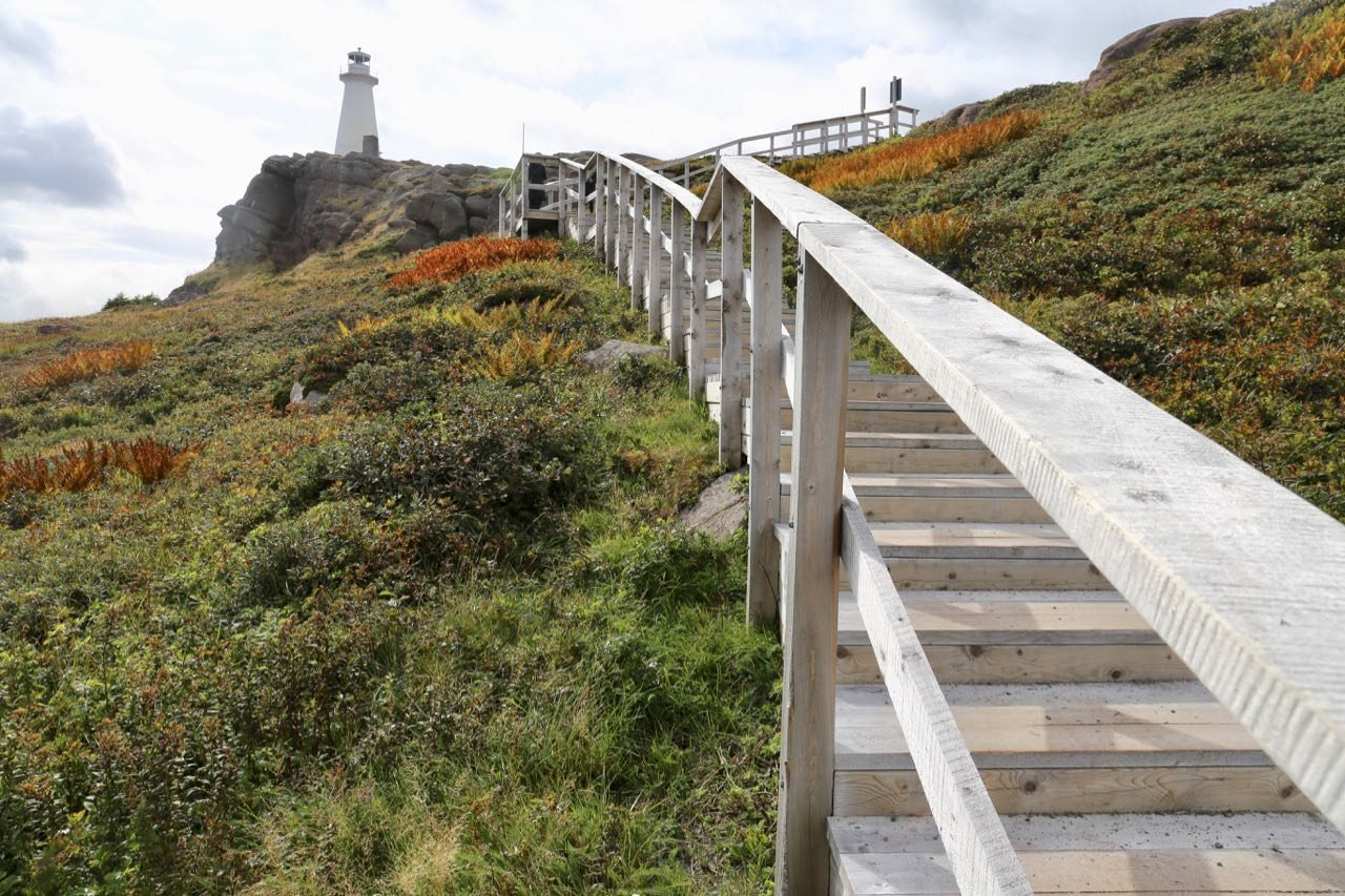 Things To Do in St. John's Newfoundland: Hike to the historic Cape Spear Lighthouse.