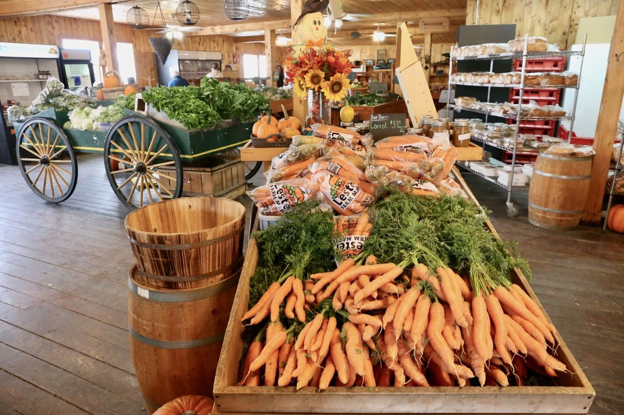 Lester Farm Market is the best place in St. John's to buy fresh local produce and baked goods.