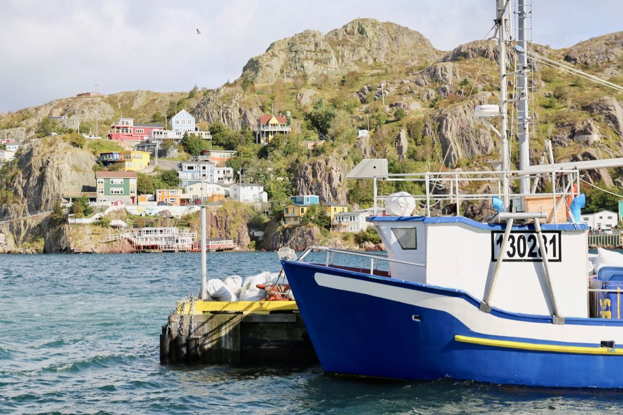 Best Things To Do in St. John's Newfoundland