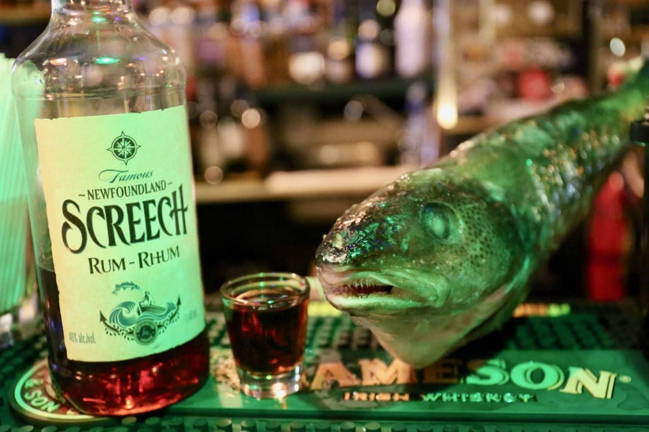 Things To Do in St. John's Newfoundland: Get Screeched-in at Christians Bar.
