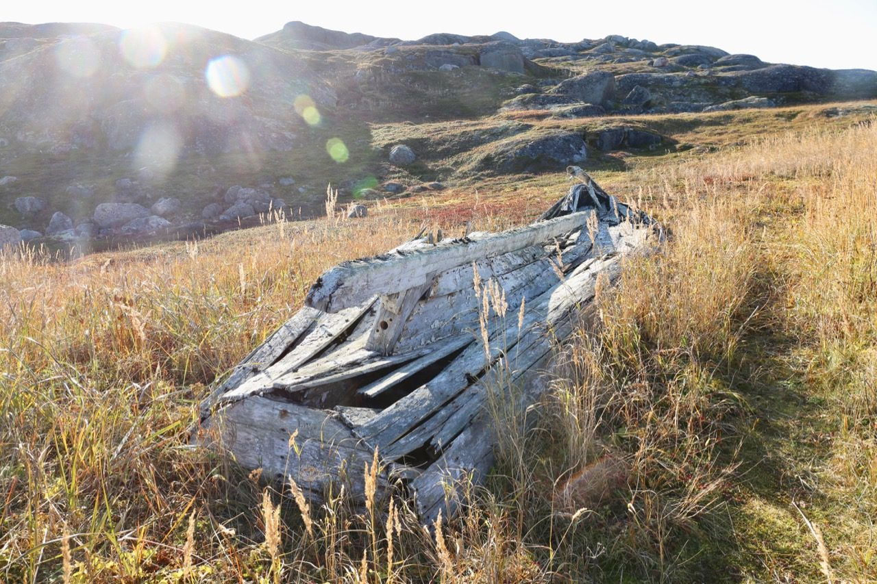 Visit a 15th century Basque whaling site on a hike around Saddle Island, Labrador.
