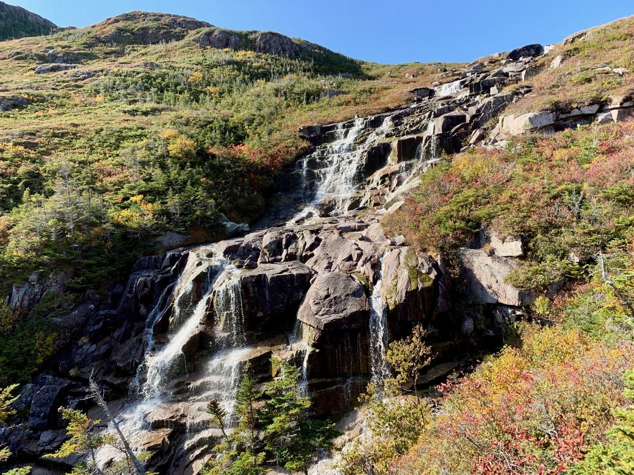 Newfoundland Cruise: Hike to a scenic waterfall and forage for berries in Francois.