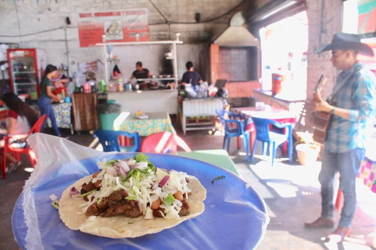 Eat the best tacos on a gay Puerto Vallarta food tour.