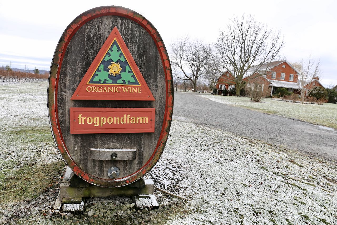 Frogpond Farm Organic Winery is a family-friendly vineyard in Niagara on the Lake.