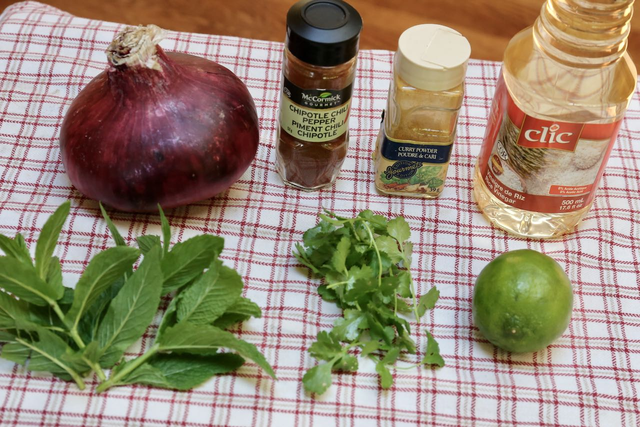 Ingredients you'll need to make Indian Onion Salad.