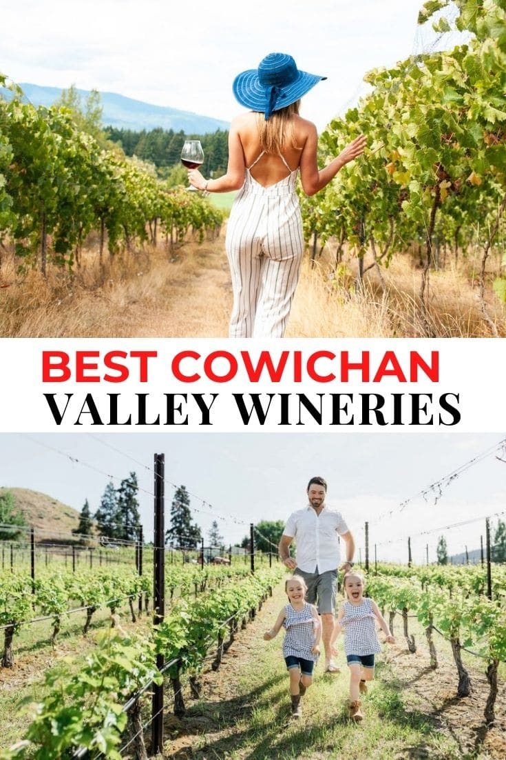 Save our Cowichan Valley Wineries guide to Pinterest!