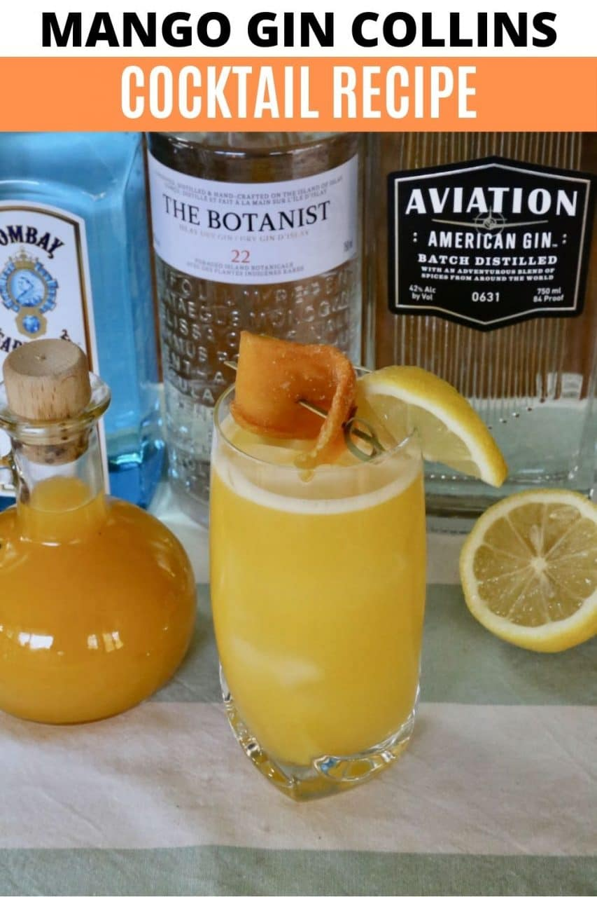 Save our Mango Gin Cocktail recipe to Pinterest!