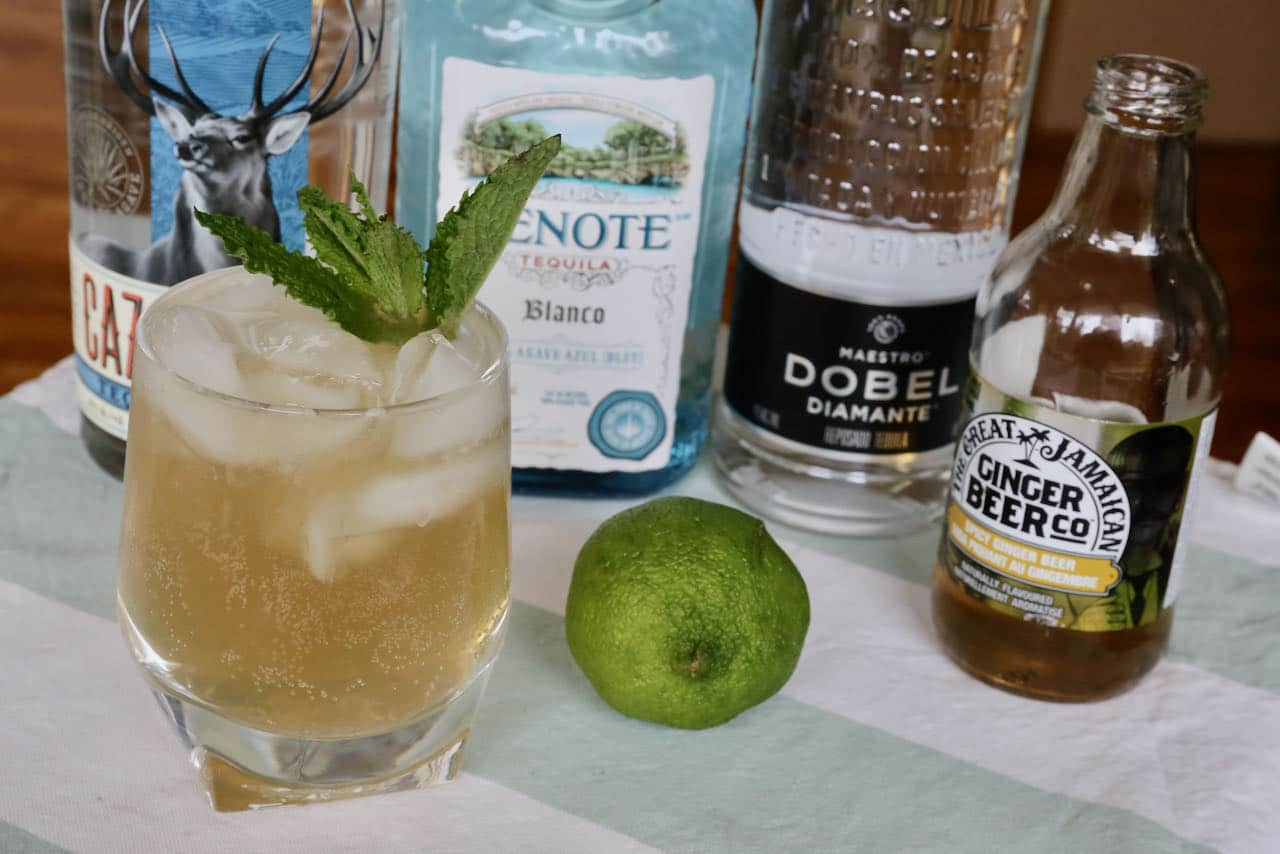 Our homemade Mexican Mule recipe features lime juice, ginger beer and mint.