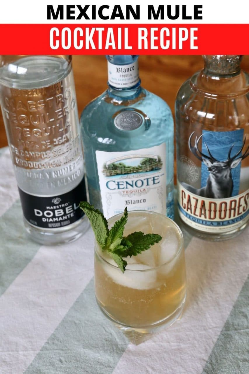 Save our easy Mexican Mule cocktail recipe to Pinterest!