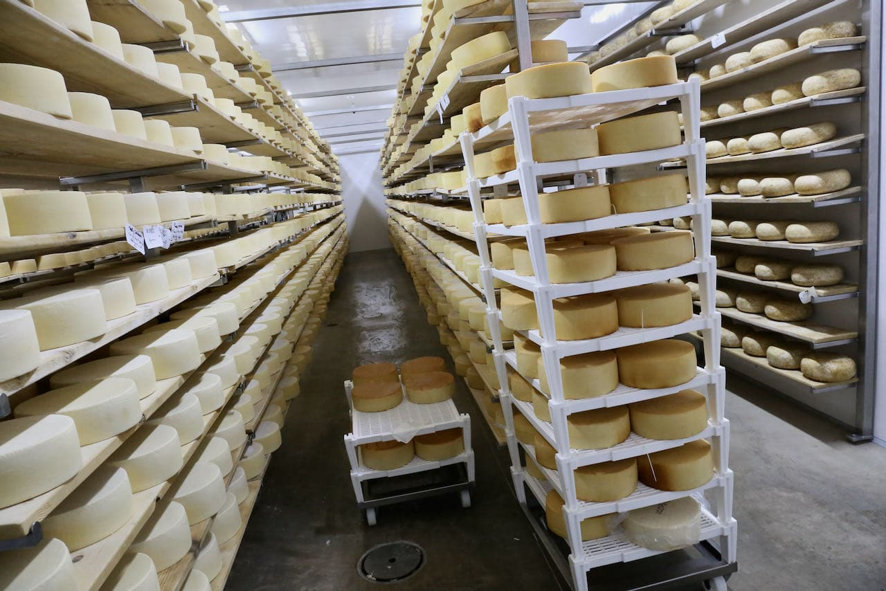 Start your Oxford County Cheese Trail adventure at Gunn's Hill.