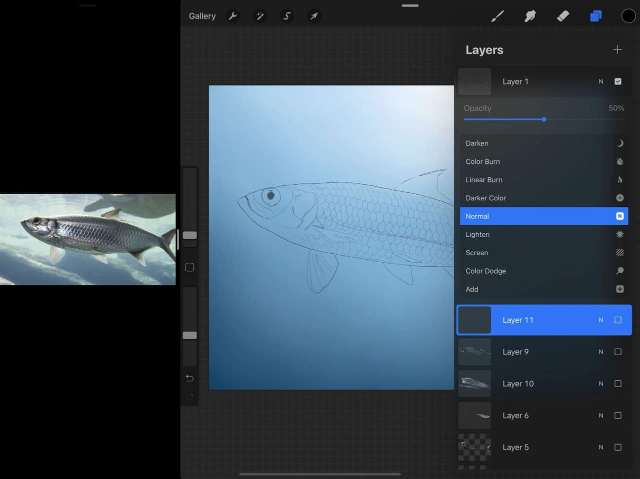 How to Draw A Fish: Work easily from your guide sketch by adjusted the opacity using Procreate