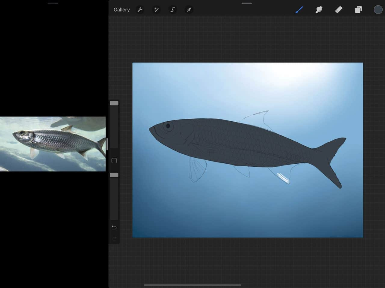 How to Draw Fish: Blocking out your shapes is a great way to start your painting