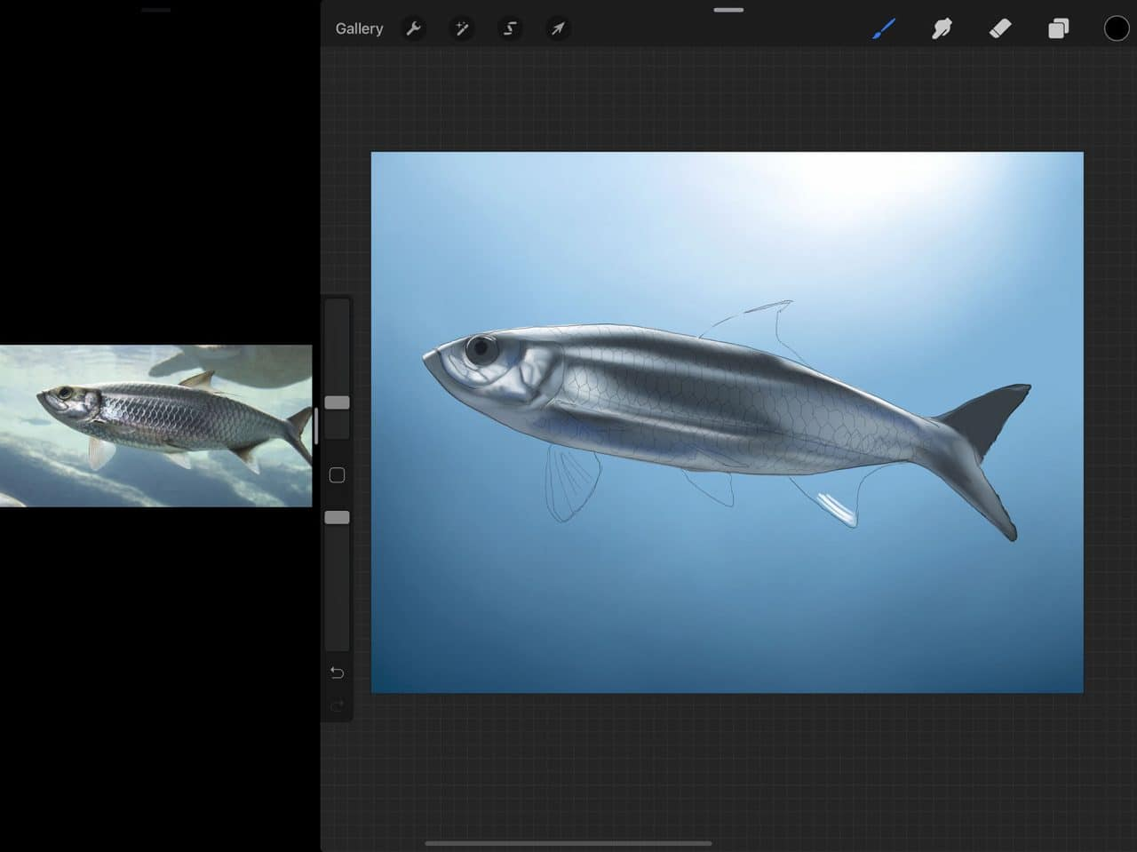 How to Draw A Fish: Procreate makes blending and creating colour gradients easy