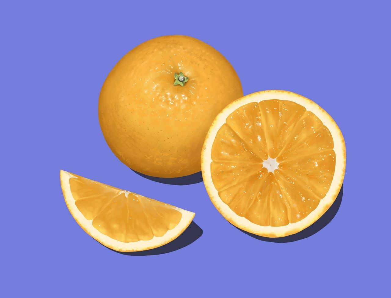 How To Draw an Orange Step by Step Procreate Tutorial